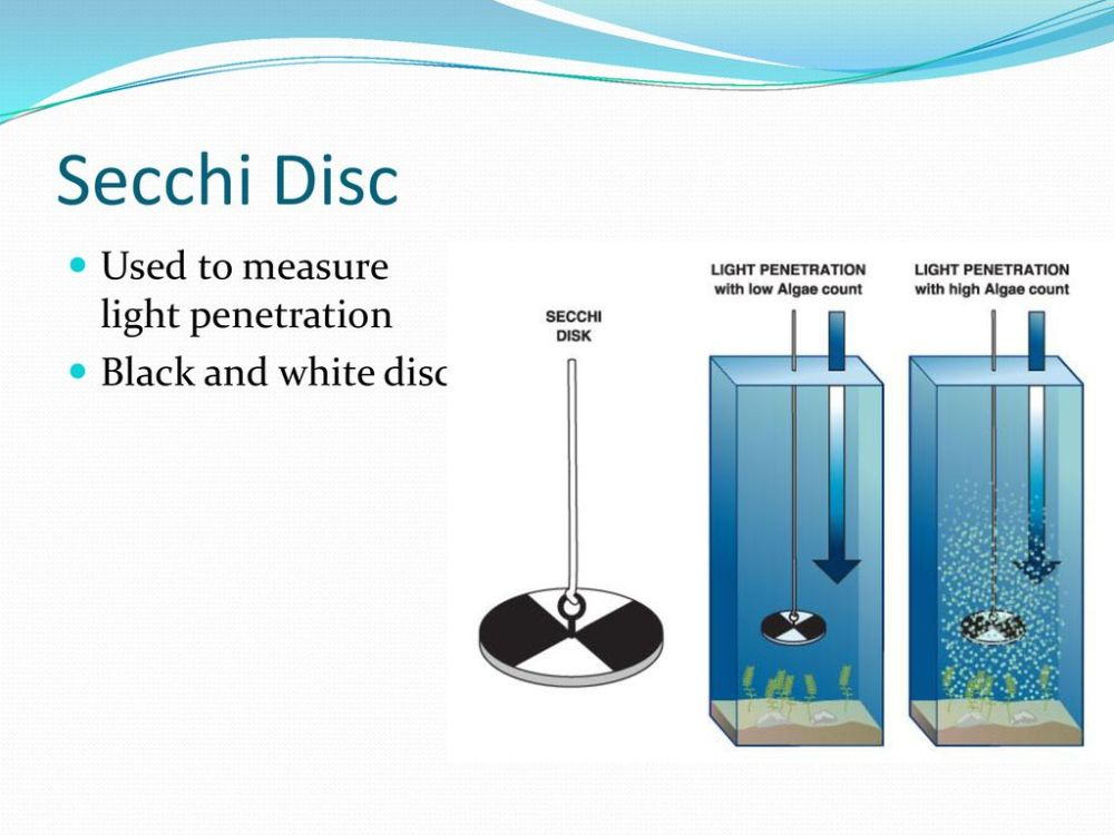 medium resolution of 5 secchi disc used to measure light penetration black and white disc
