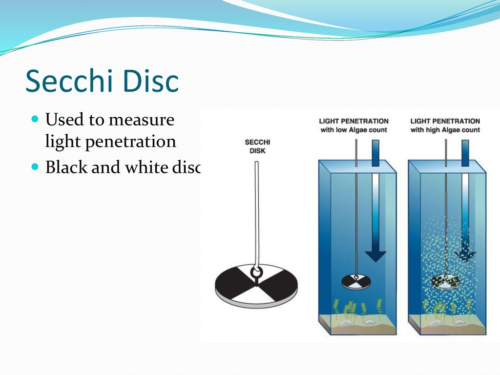 hight resolution of 5 secchi disc used to measure light penetration black and white disc