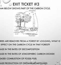 exit ticket 3 the diagram below shows part of the carbon cycle  [ 1024 x 768 Pixel ]