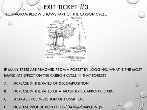small resolution of exit ticket 3 the diagram below shows part of the carbon cycle