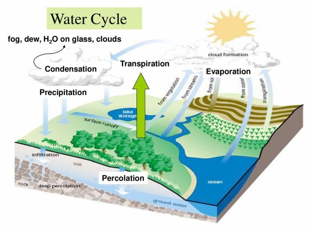 medium resolution of 4 water