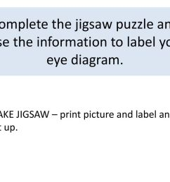 complete the jigsaw puzzle and use the information to label you eye diagram  [ 1024 x 768 Pixel ]