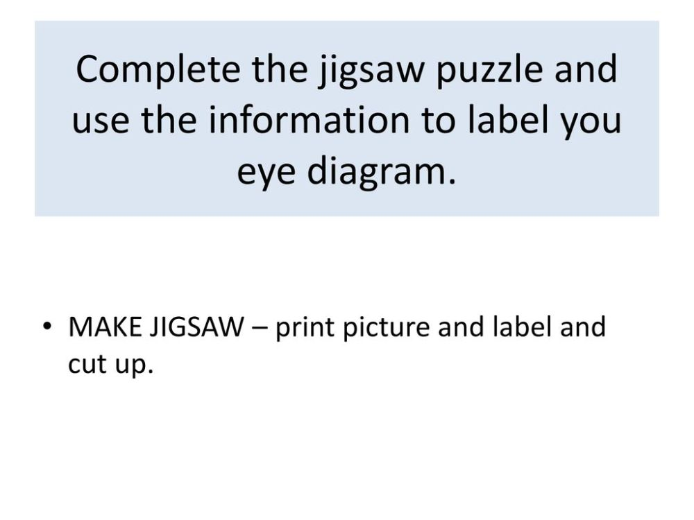 medium resolution of complete the jigsaw puzzle and use the information to label you eye diagram