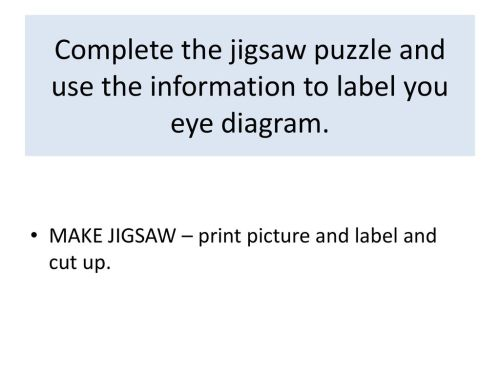 small resolution of complete the jigsaw puzzle and use the information to label you eye diagram