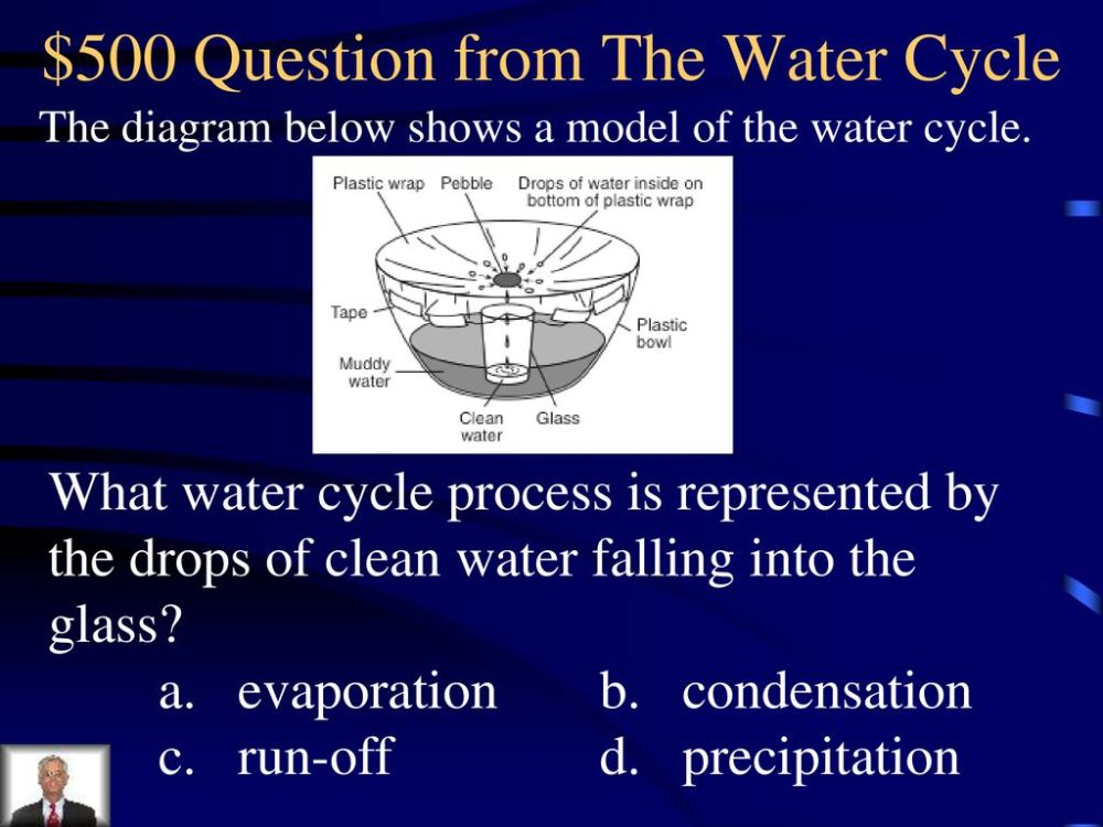 medium resolution of  500 question from the water cycle