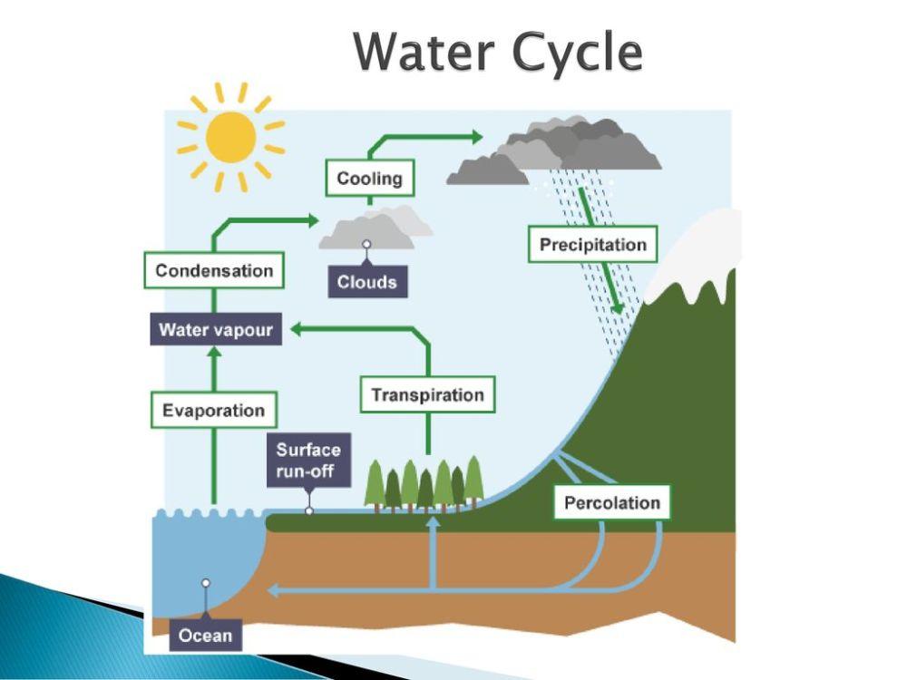 medium resolution of 6 water cycle