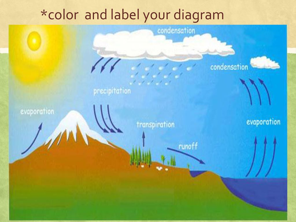 hight resolution of 5 color and label your diagram