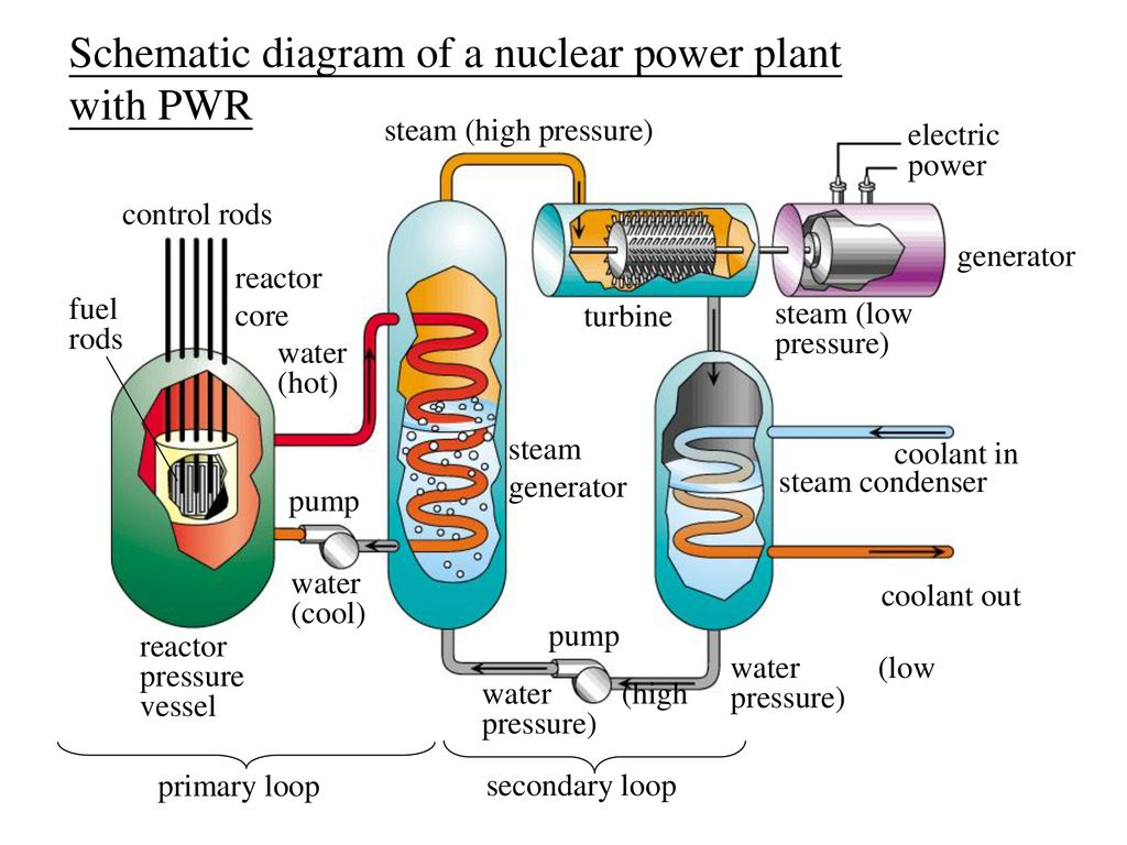 hight resolution of schematic diagram of a nuclear power plant with pwr