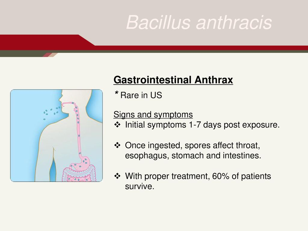 hight resolution of gastrointestinal anthrax rare in us