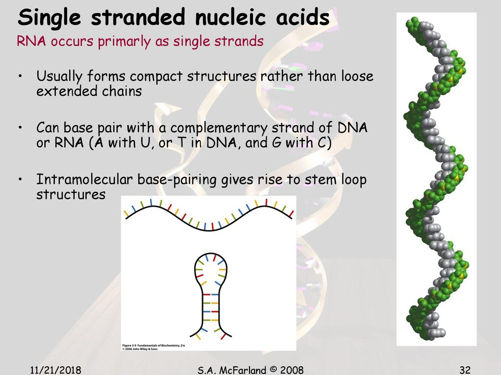 hight resolution of 32 single stranded nucleic acids