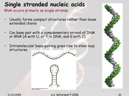 small resolution of 32 single stranded nucleic acids