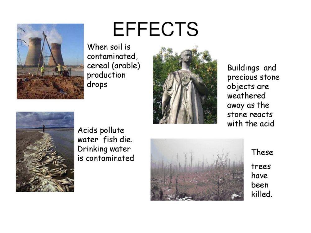 medium resolution of 10 effects