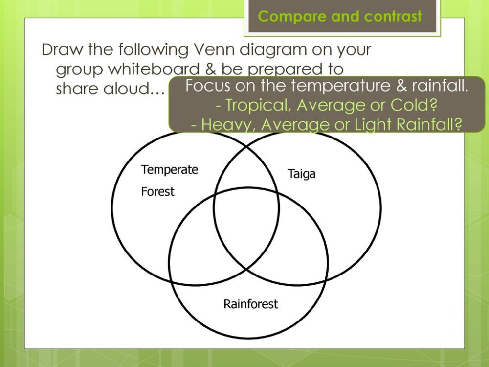 medium resolution of temperate forest rainforest taiga compare and contrast draw the following venn diagram on your group whiteboard be prepared to