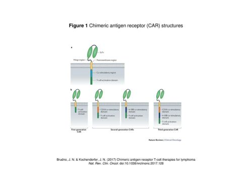 small resolution of figure 1 chimeric antigen receptor car structures