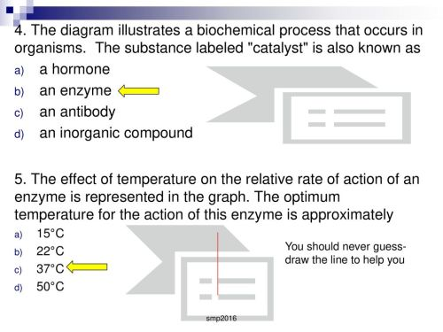small resolution of the diagram illustrates a biochemical process that occurs in organisms the substance labeled
