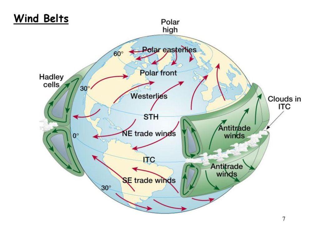 medium resolution of 7 wind belts