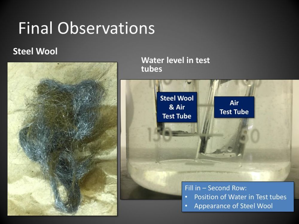 medium resolution of final observations steel wool water level in test tubes