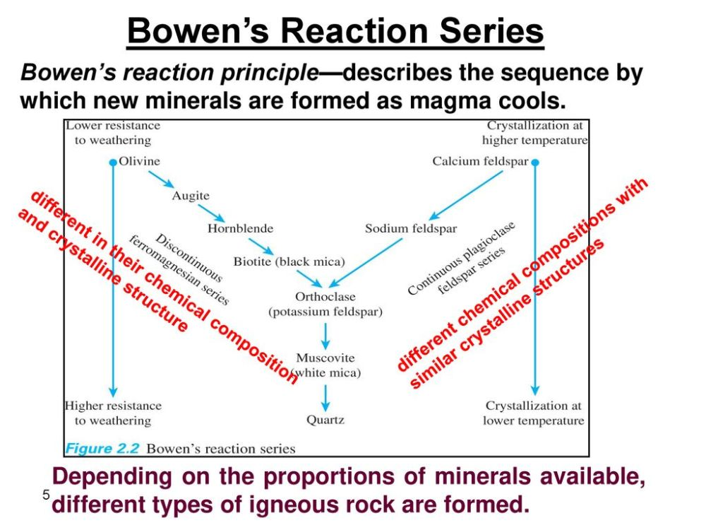 medium resolution of 5 bowen s reaction series