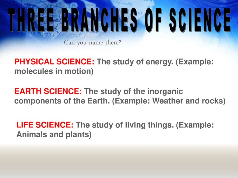 medium resolution of Introduction to 8th Grade General Science - ppt download
