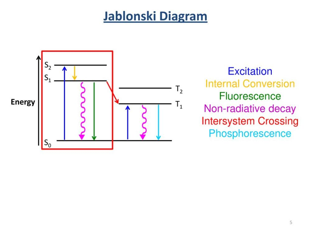 medium resolution of jablonski diagram excitation internal conversion fluorescence