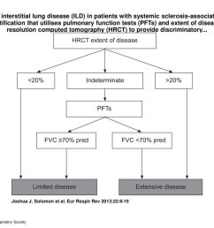1 extent of interstitial lung disease ild in patients with systemic sclerosis associated ild a simple stratification that utilises pulmonary function  [ 1024 x 768 Pixel ]