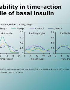Variability in time action profile of basal insulin also bolus regimen  dm ppt download rh slideplayer