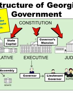 structure of georgia government also foundations   ppt video online download rh slideplayer