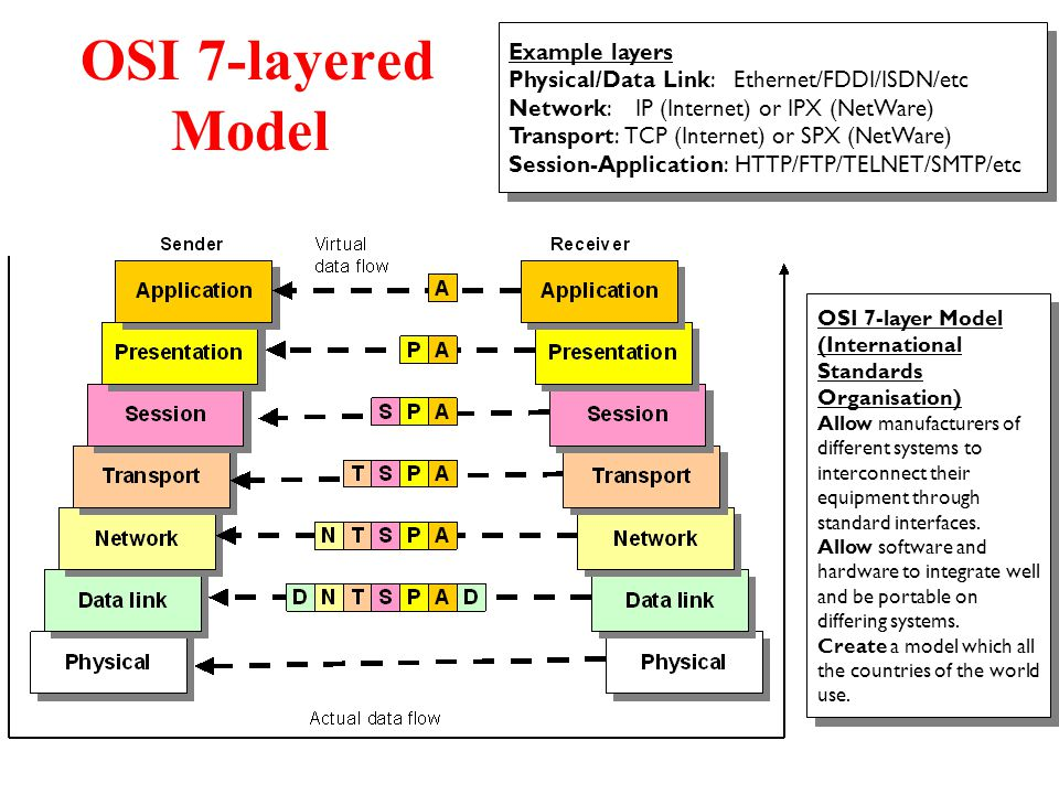 diagram of osi reference model wiring to convert three phase single motors chapter 1: introduction - ppt video online download
