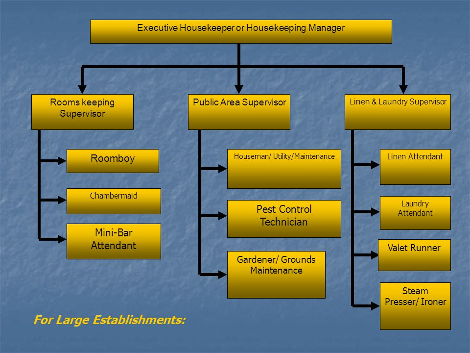 Housekeeping Organizational Chart  ppt video online download