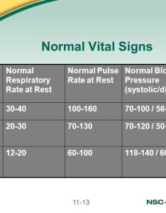 Normal vital signs patient respiratory rate at rest also lesson secondary assessment ppt video online download rh slideplayer
