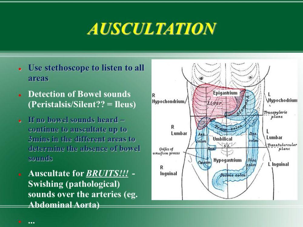 medium resolution of 7 auscultation