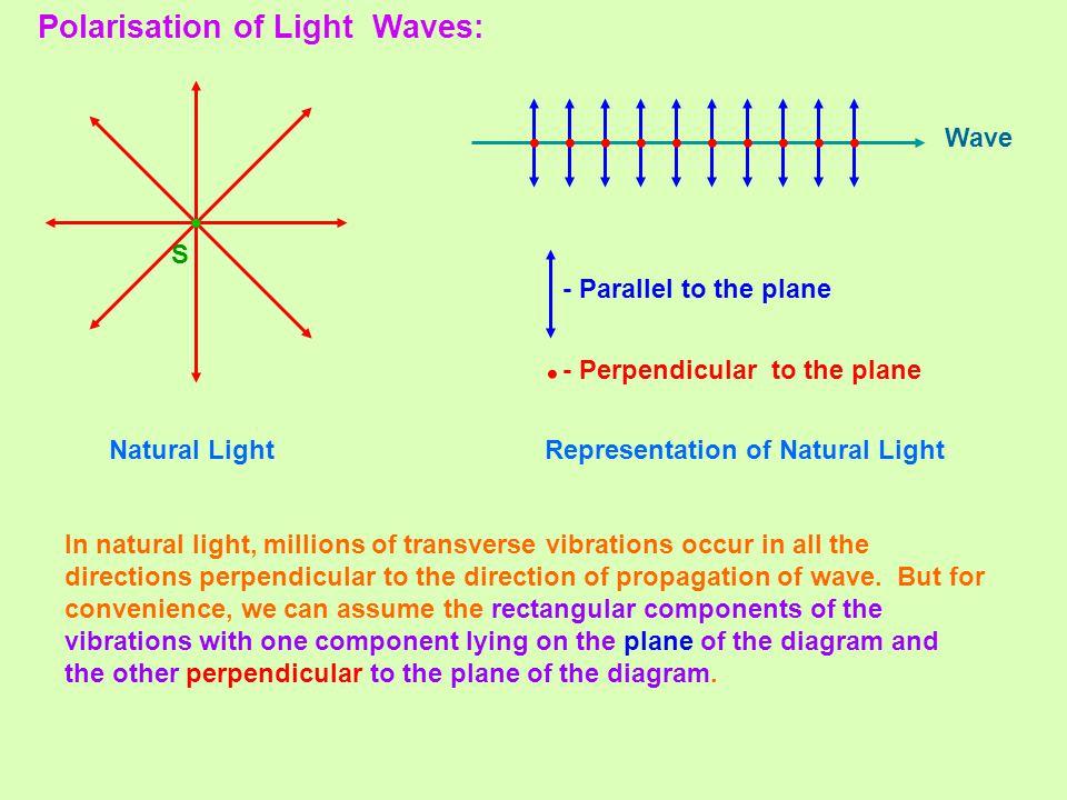 light wave diffraction diagram crocodile skeleton anatomy optics - ii electromagnetic ppt video online download