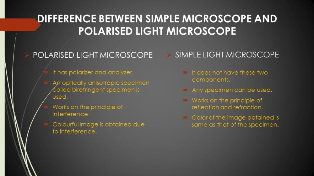 medium resolution of difference between simple microscope and polarised light microscope