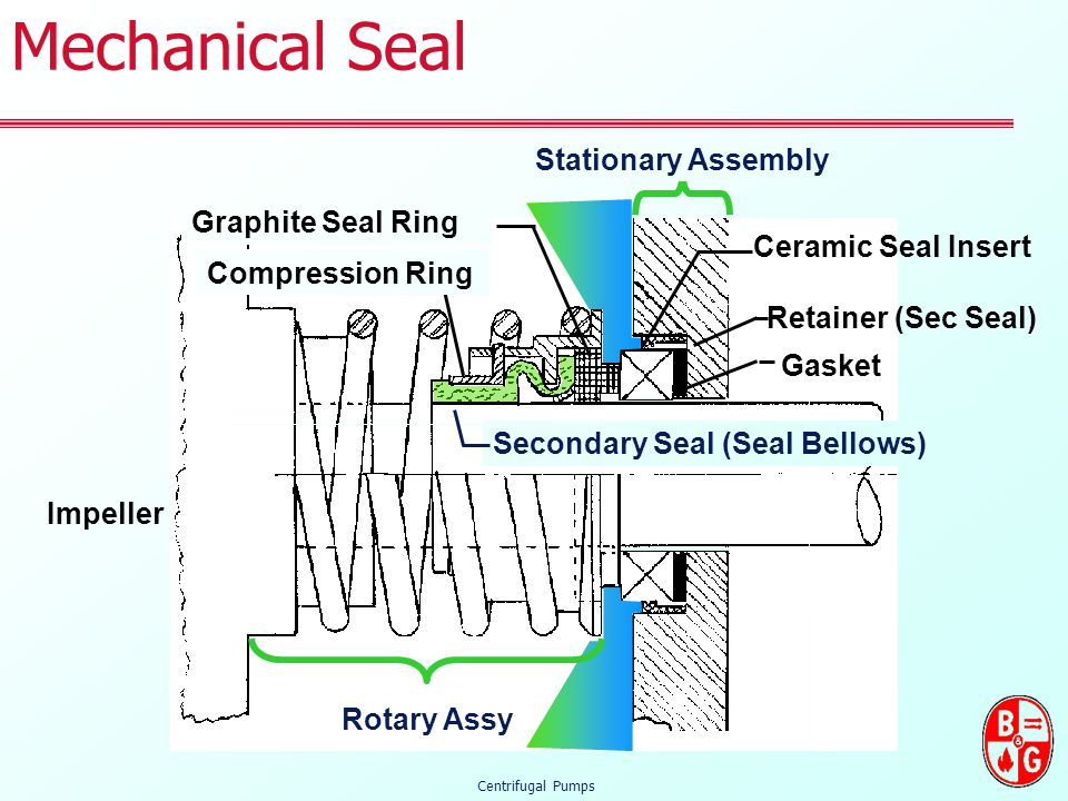 centrifugal pump mechanical seal diagram kenwood head unit wiring what is a ppt video online download secondary bellows