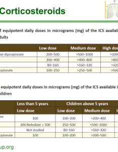 inhaled corticosteroids also the saudi initiative for asthma guidelines diagnosis and rh slideplayer