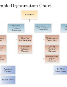 sample organization chart also designing adaptive organizations ppt download rh slideplayer