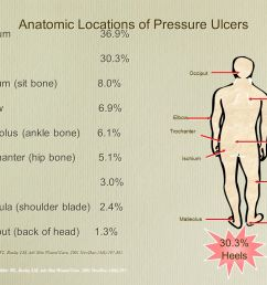anatomic locations of pressure ulcers [ 1365 x 1024 Pixel ]