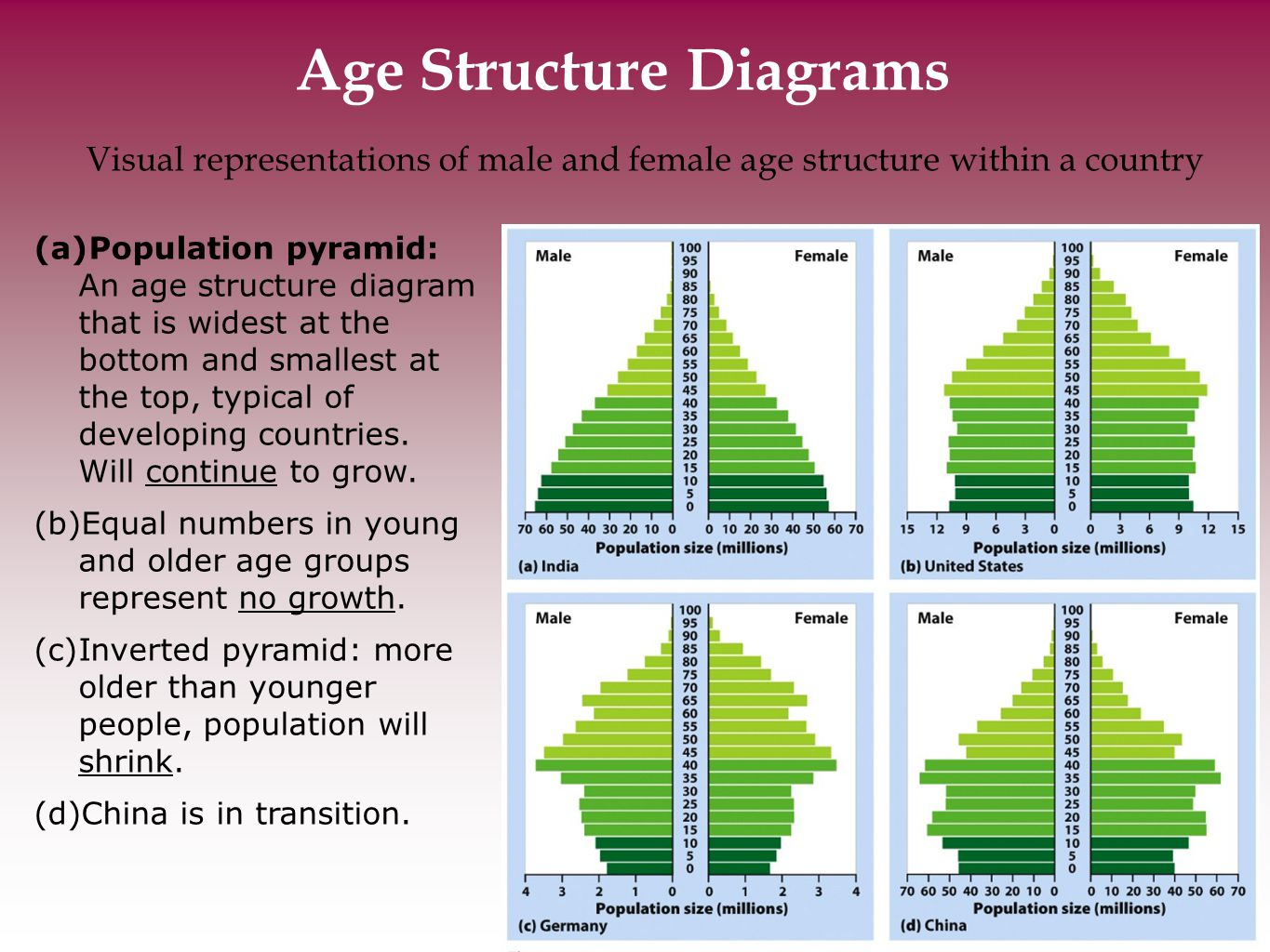 hight resolution of age structure diagrams