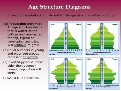 small resolution of age structure diagrams