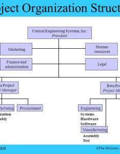 Project organization structure also chapter irwin mcgraw hill ppt download rh slideplayer