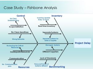 Root Cause Analysis Presented By: Team: Incredibles  ppt