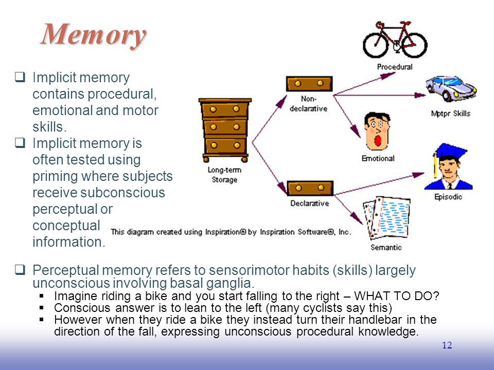 Cognitive Neuroscience and Embodied Intelligence  ppt
