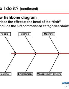 how also cause and effect diagram ppt video online download rh slideplayer