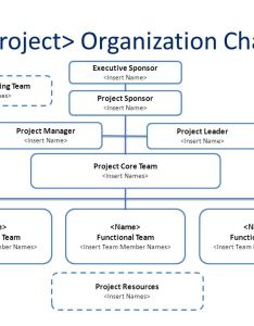 cproject   organization chart also project roles  responsibilities matrix ppt rh slideplayer