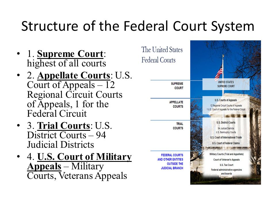 judicial branch court system diagram megasquirt 3 wiring mega diagrams and information united states shawna bassett ppt video online download structure of the federal