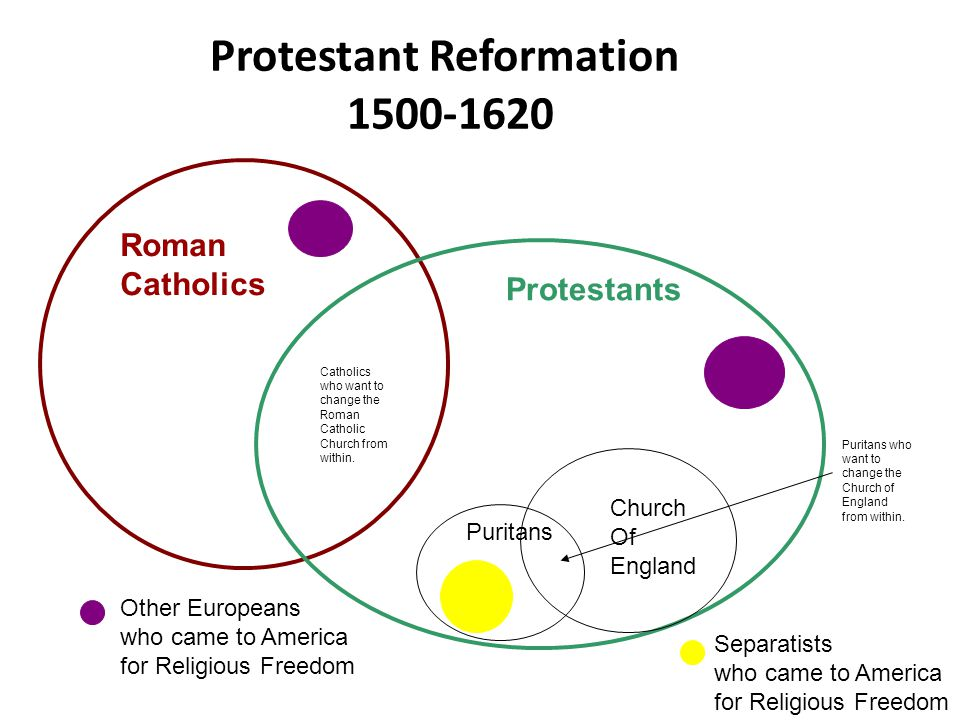 pilgrims vs puritans venn diagram hopkins 7 way plug wiring separatists schematics life in the colonies tssbat ppt download rh slideplayer com