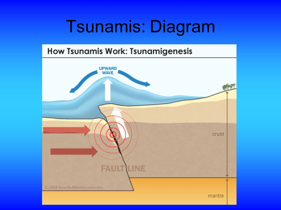 tsunami diagram with labels lifan wiring 125 japan earthquake and ppt video online download 6 tsunamis