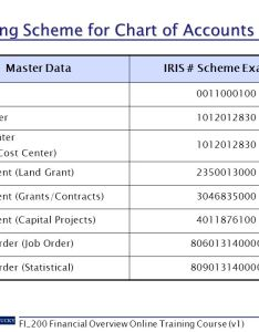Numbering scheme for chart of accounts also financial overview fi online course ppt download rh slideplayer