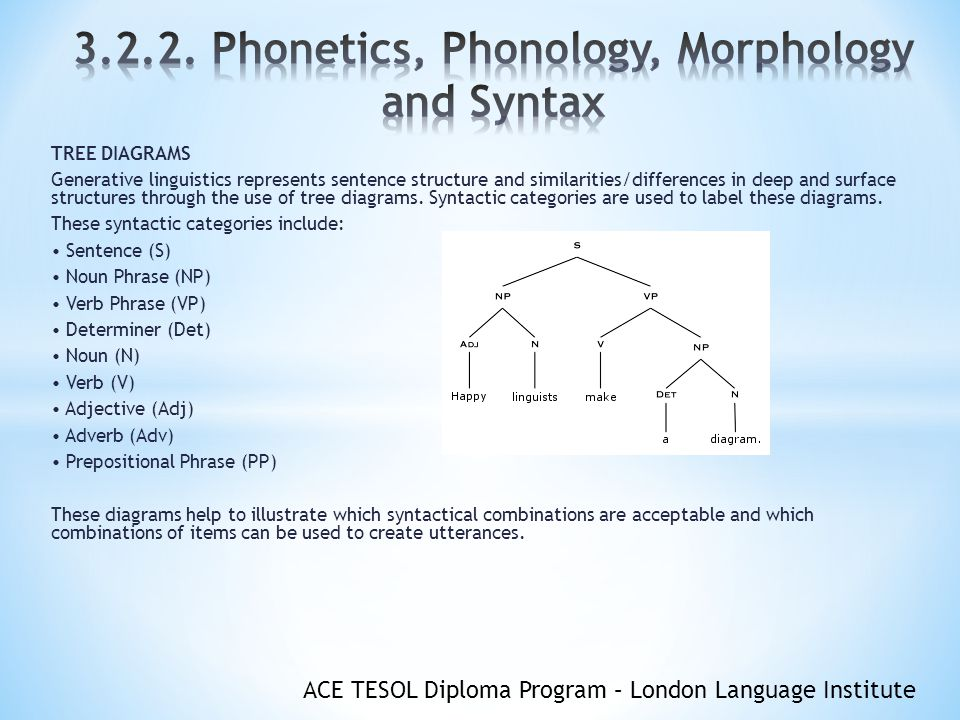 morphology tree diagram 2005 subaru forester radio wiring phonetics phonology and syntax ppt video online download