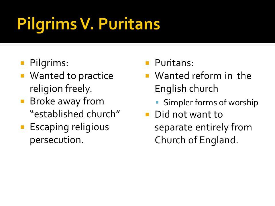 pilgrims vs puritans venn diagram stihl fs 55 carburetor puritas pilgrams and plymouth colony the new england colonies ppt download